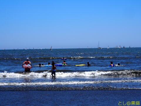 湘南海岸沿い 江ノ電で散策 海と旨いもの